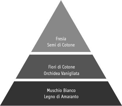 piramide olfattiva Fleur de Coton
