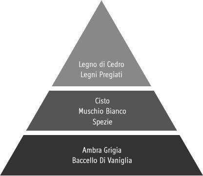 piramide olfattiva Marquise