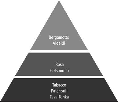 piramide olfattiva angelique