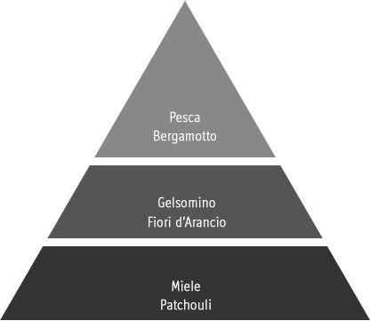 piramide olfattiva antoinette mathilde
