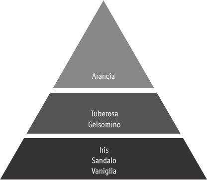 piramide olfattiva bouquet précieux