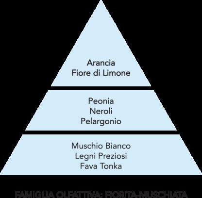 piramide olfattiva brezza mami milano