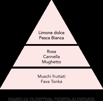 piramide olfattiva diamante rosa mami milano